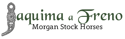 JaF Morgan Stock Horses logo